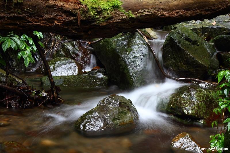 雲森瀑布 (6)