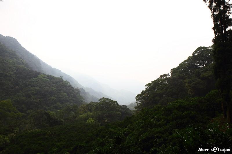 雲森瀑布 (10)