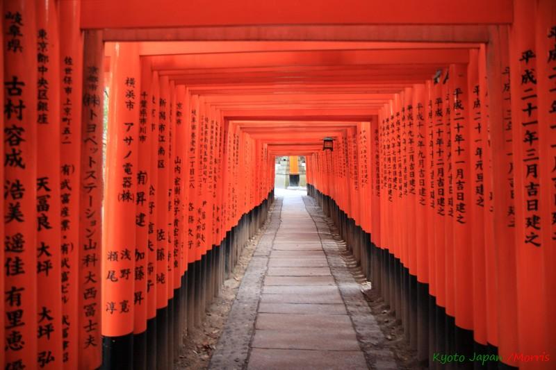 伏見稻荷神社 (8)