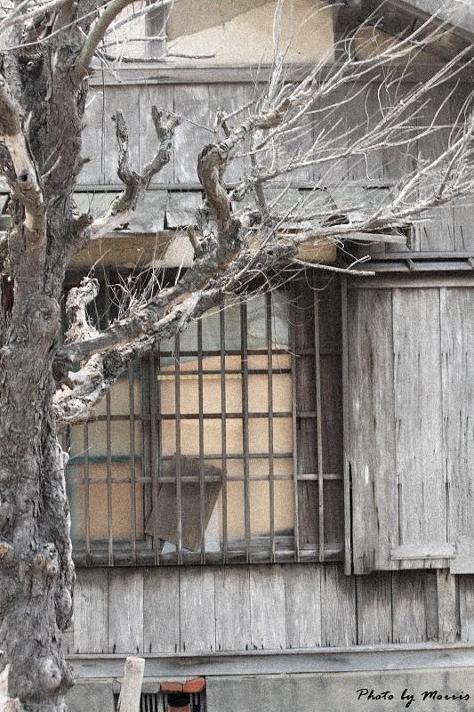 消失的台鹼宿舍 (20)