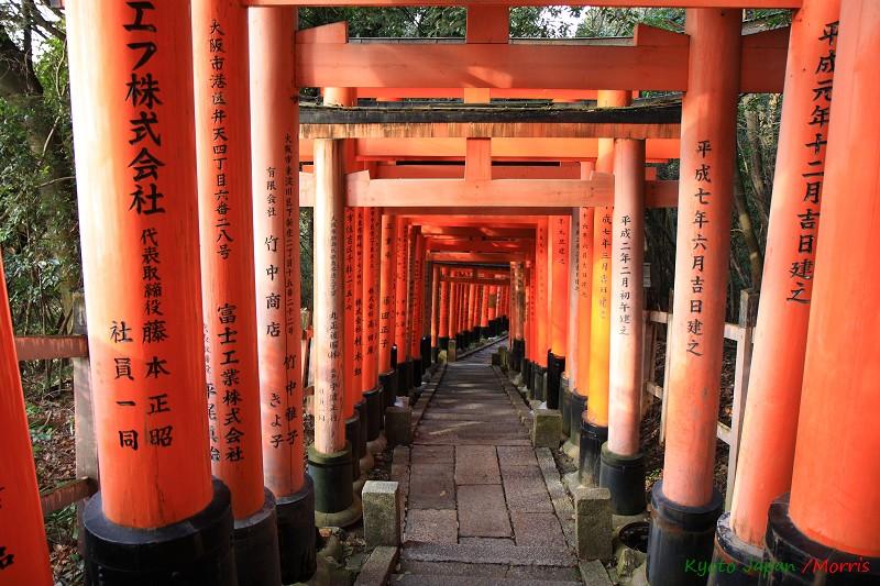 伏見稻荷神社 (54)
