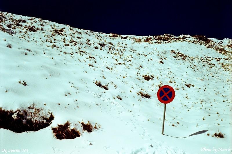 合歡山冬雪 (6)