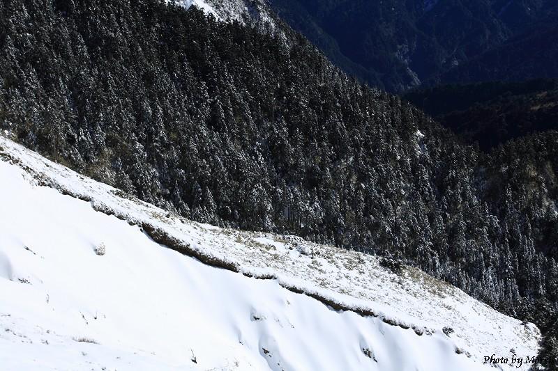 合歡山冬雪二部曲 (26)