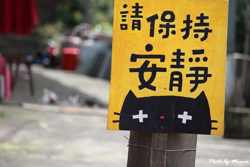 散步猴硐貓村 (09)