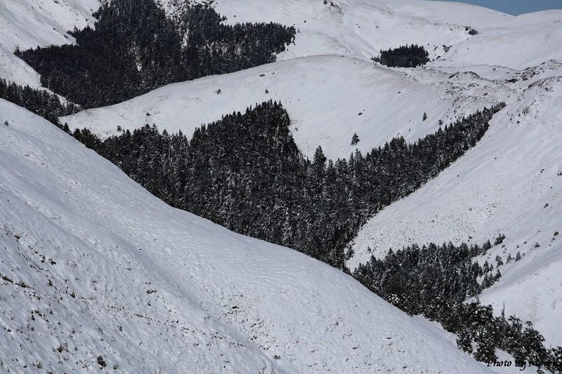 合歡山冬雪二部曲 (09)