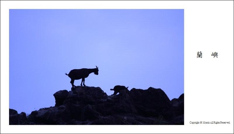 山羊的國度 (24)