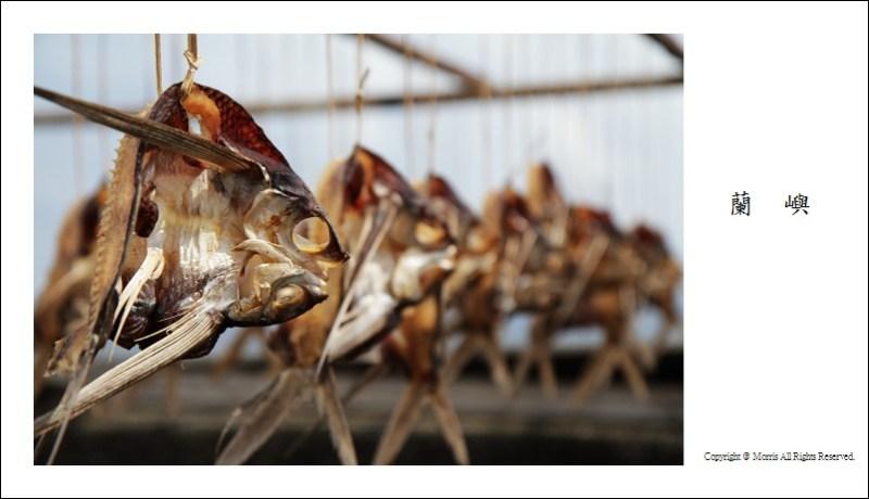 飛魚季 (08)