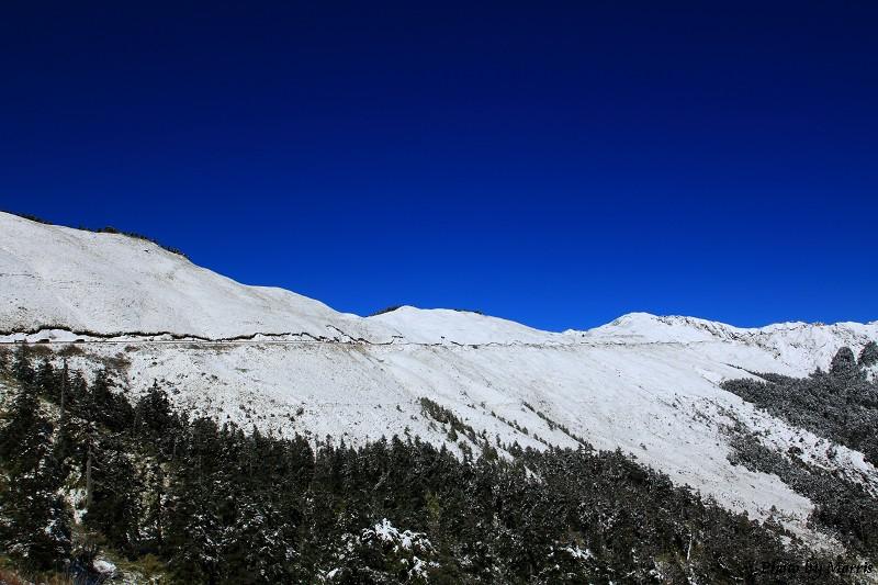 合歡山冬雪前奏曲 (25)