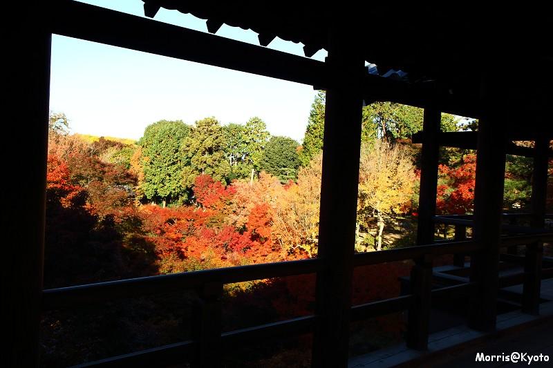 東福寺 (14)