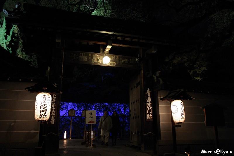 青蓮院門跡 (18)