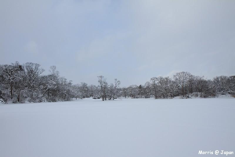 大沼公園 (52)