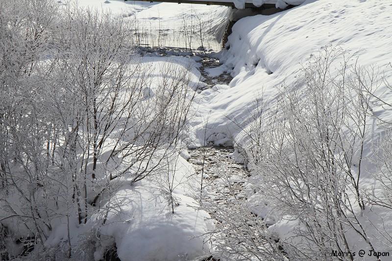 美瑛之冬 二 (97)