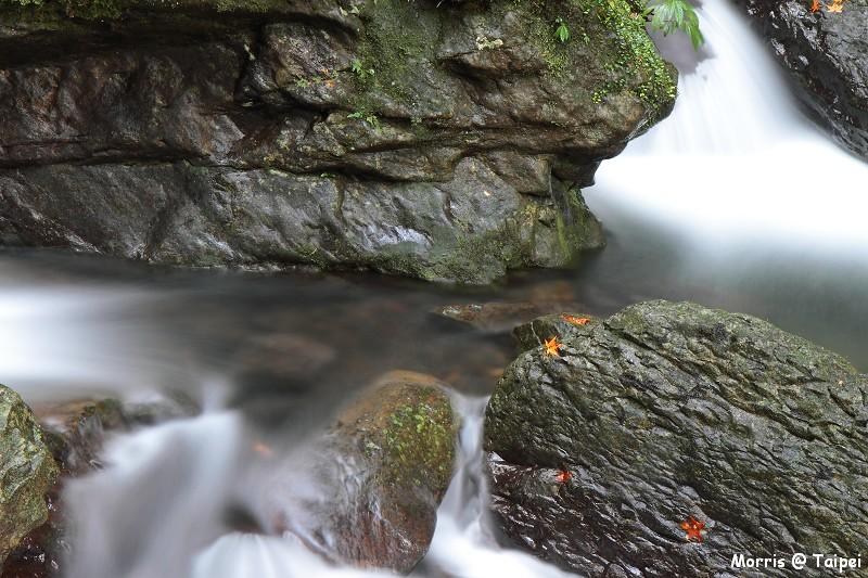 雲森瀑布 楓紅楓落 (6)