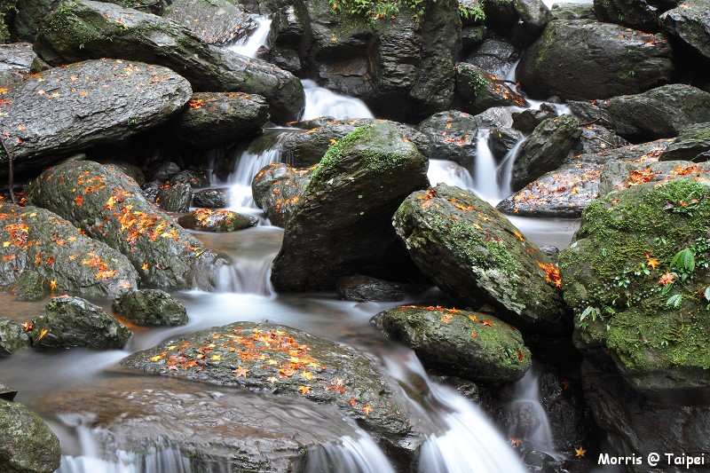 雲森瀑布 楓紅楓落 (4)