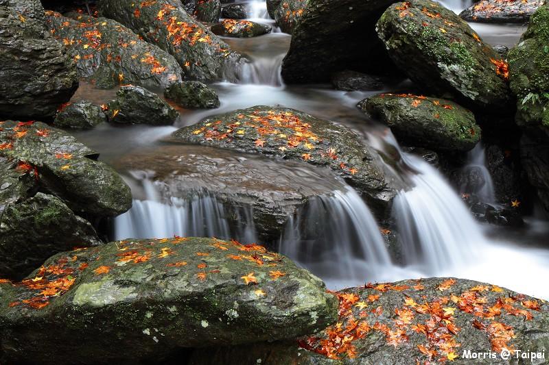 雲森瀑布 楓紅楓落 (8)