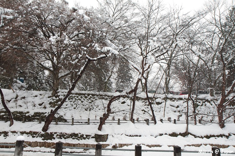 高山 東山散步道 (4)