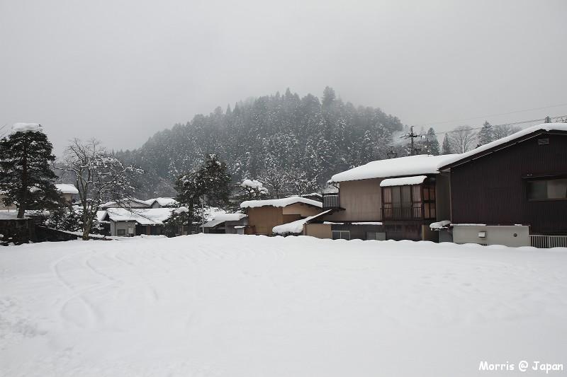 高山 東山散步道 (13)