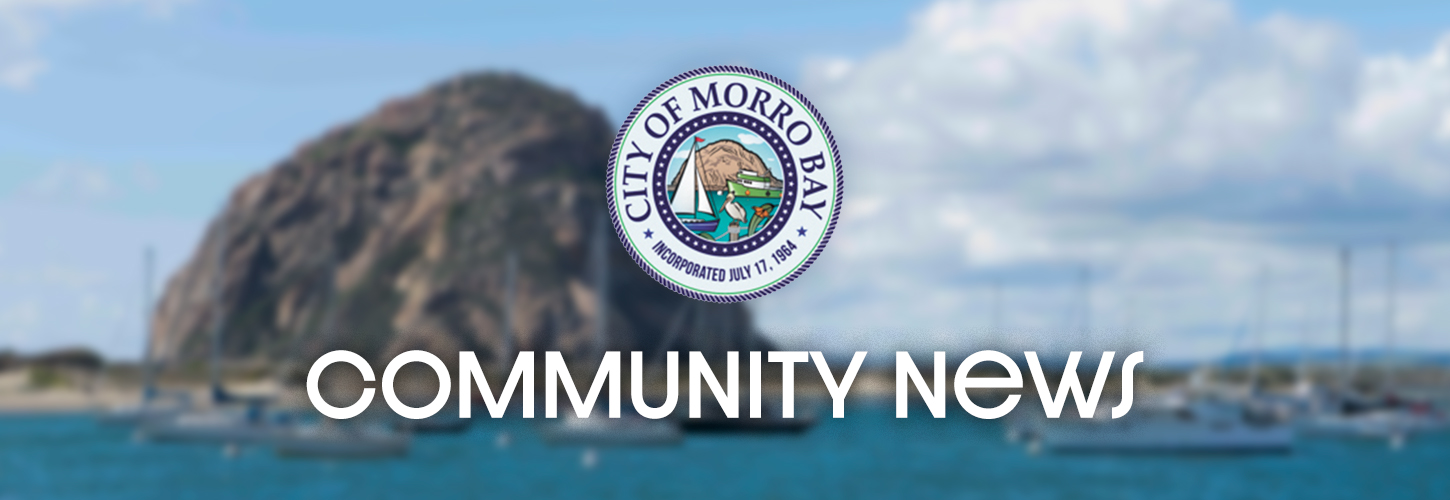 City Approves Monitoring Contracts | Morro Bay Beach Life