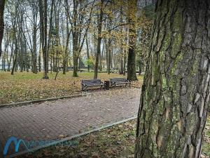 Скамейки в парку Моршина