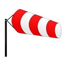 Mortagne et Les Rouges-Eaux privés d'électricité à cause de la chute d'un arbre