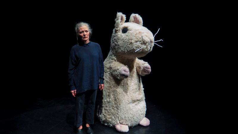 """Bodil Lassen i """"En kat i en tom lejlighed"""""""