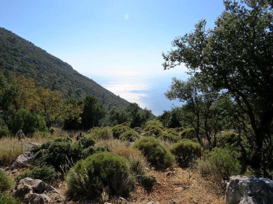 Blick auf das Mittelmeer
