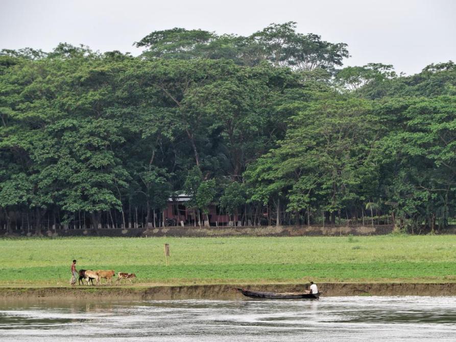 Meghna, Tropen, Bangladesch