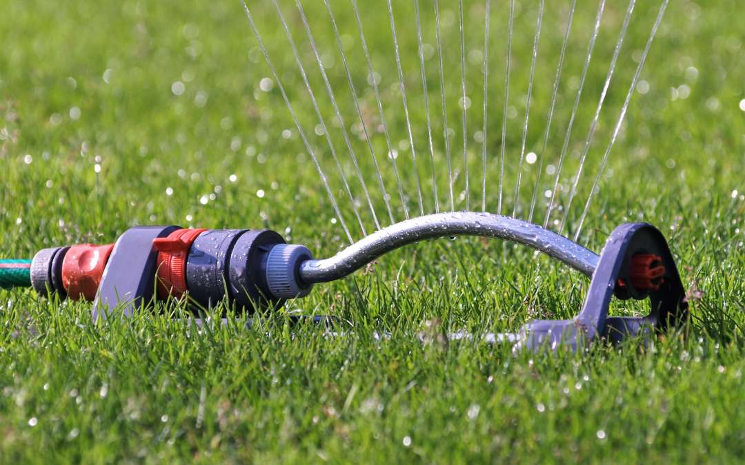 4 things people get wrong when watering their lawn