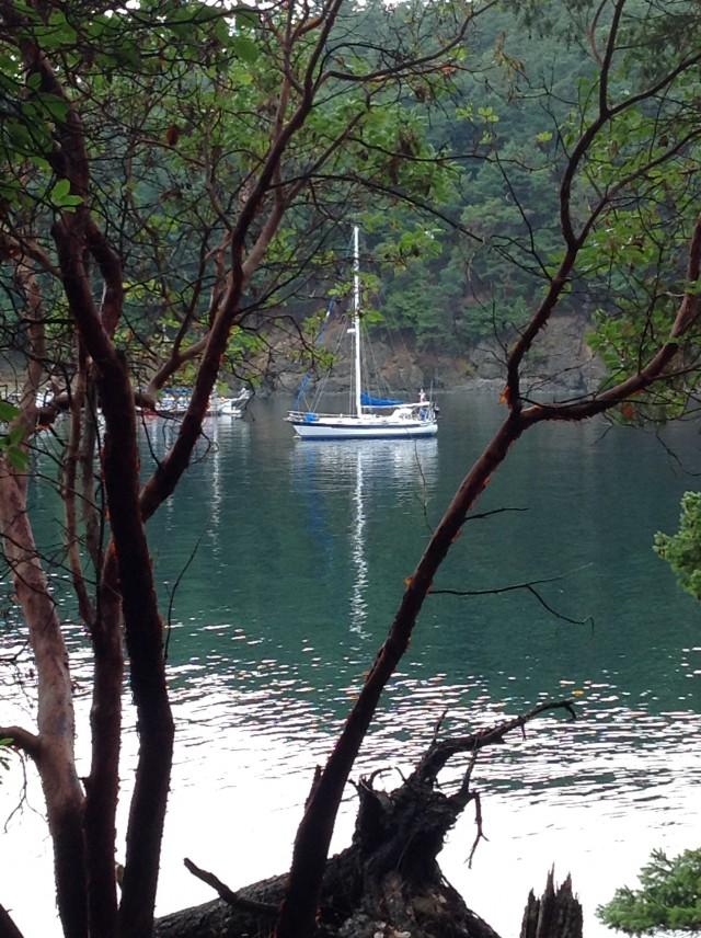 Pointless Jones Island Aug 2014