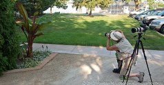 An Horticulcural Photographer - Ball Horticultural Company, MAPS 120804