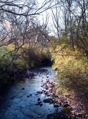 Stream across road