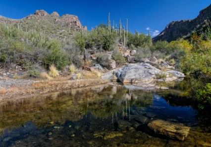 Chuck Hunnicutt - Sabino Canyon-12