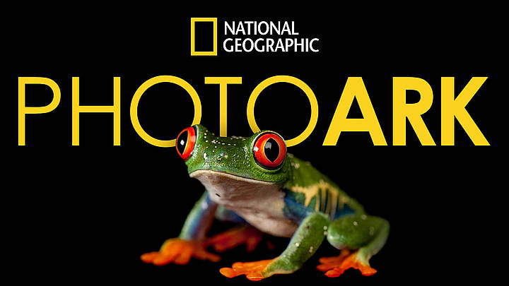 "TONIGHT! ""Photo Ark"" Saturday, October 17 on Nat Geo Wild @ 10PM - Morty's  TV"