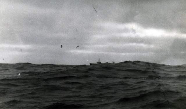 ocean szalał