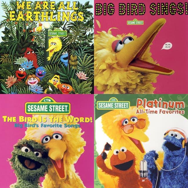 50 big bird songs