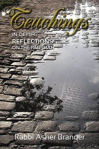 Teachings: In-Depth Reflections on the Parshah