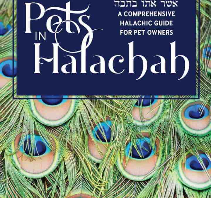 Pets in Halachah
