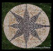 Full sun pebble mosaic