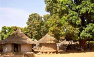 village_guinee