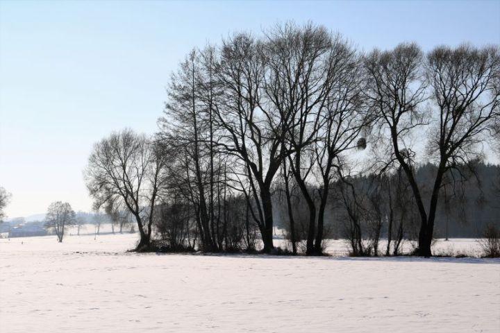 2017_01_innviertel_im_winter_06