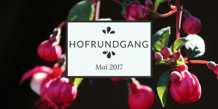 Hofrundgang Mai