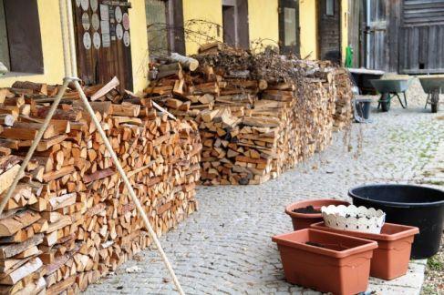 Holzstapel und Tulpen