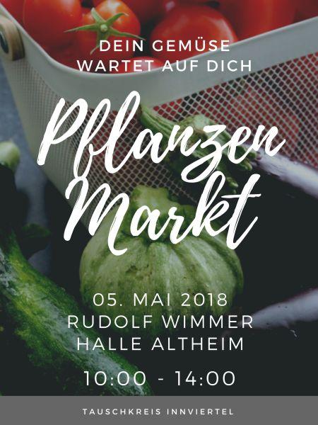 Vegetable Market Business Poster.jpg