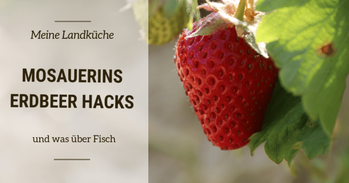 Mosauerins sommerliche Erdbeer Hacks – und epps über Fisch
