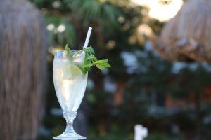 cocktails therme geinberg mosauerin innviertel