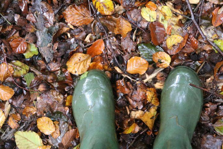 WaldZAUBER: Warum Kinder in den Wald gehören (und 3 Tipps die du sofort umsetzen kannst)