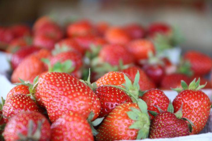 Erdbeeren Innviertel Mosauerin