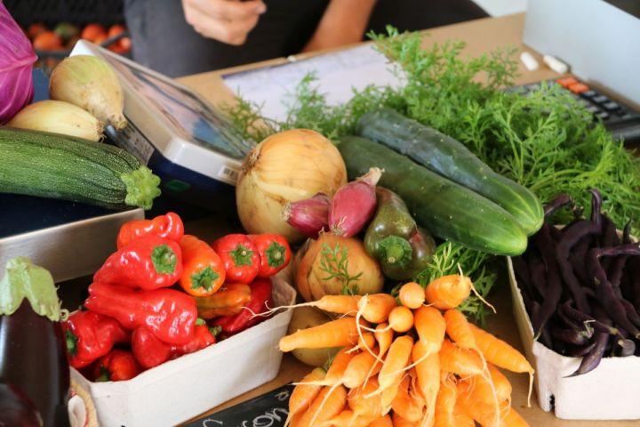 Biohof Genger – Regionales Gemüse aus Treubach