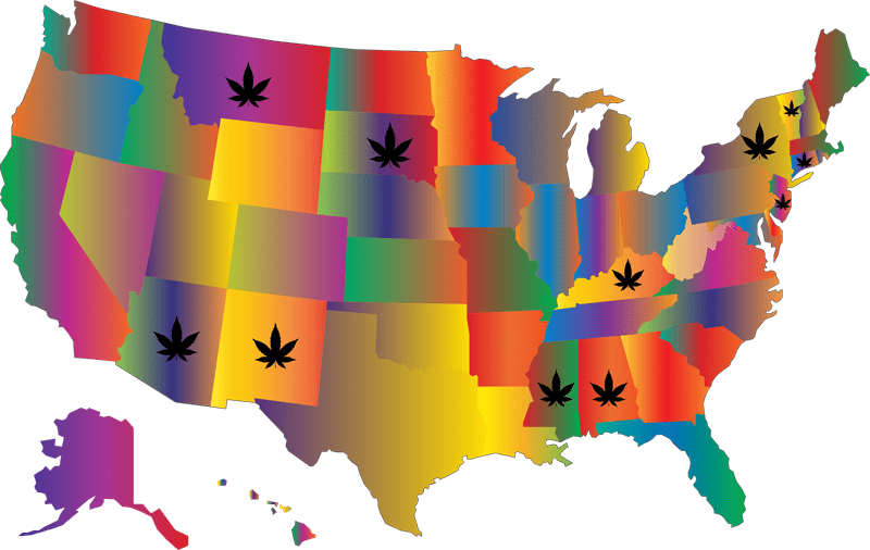 Cannabis Legislation on the 2020 Ballot this November