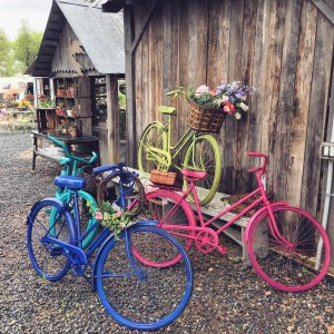 brightly colored bikes